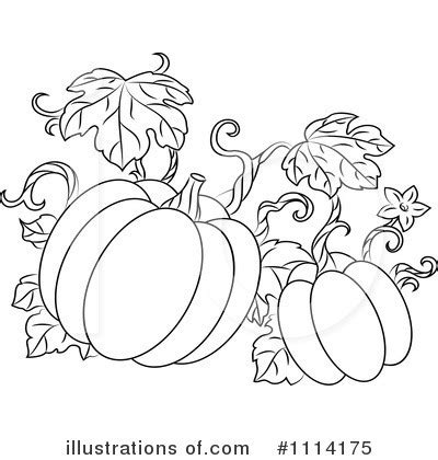 coloring pages of pumpkin vines pumpkins clipart 1114175 illustration by vector