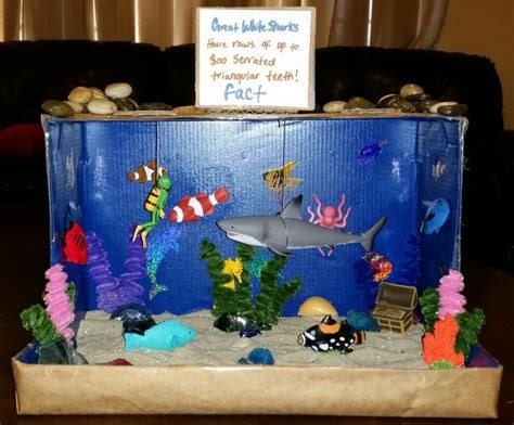 printable fish for diorama shark diorama kids school projects pinterest sharks
