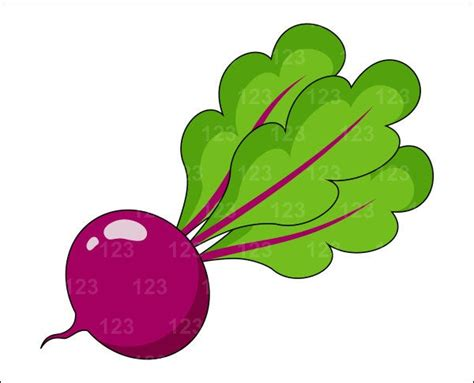 items similar to vegetable beet beetroot single digital