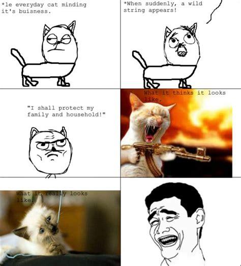 cat rage room kitty rage humor pinterest