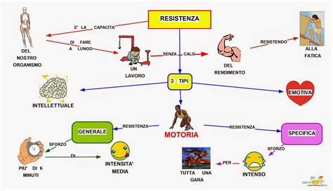 test educazione fisica mappa concettuale resistenza motoria scuolissima