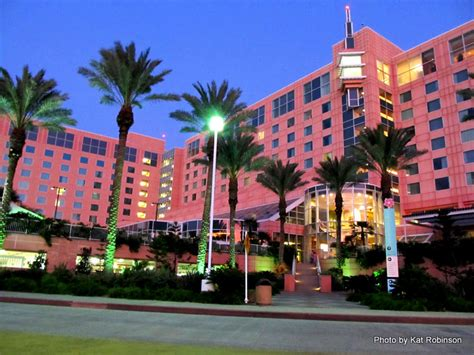 Moody Gardens Hotel by Traveling With A Toddler Galveston Day 1 Tie Dye