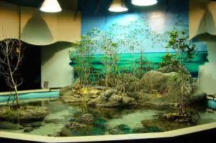 aquarium decor 5 popular styles for fish tanks decor 5000 gallon custom saltwater aquarium i would love a huge