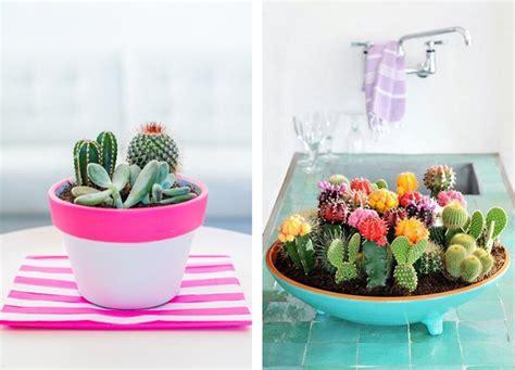 decorar con plantas suculentas decorar con cactus y plantas suculentas alquimia deco