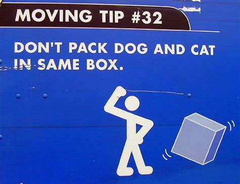 house movers singapore 5 tips on house mover