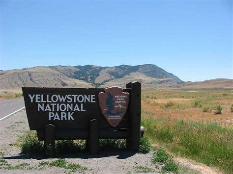 yellowstone national park yellowstone national park animal photo
