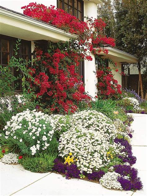 flowers for front yard 79 best rock garden ideas images on