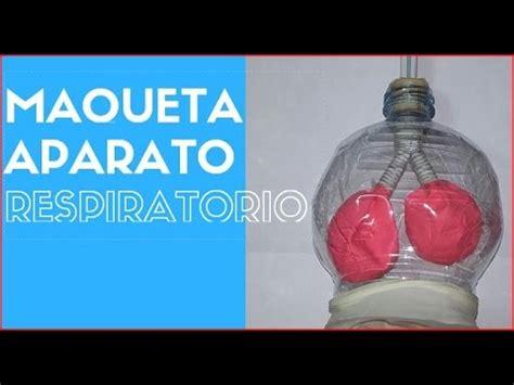 youtobe videos cmo nacer maqueta sistema respiratorio maqueta aparato respiratorio youtube