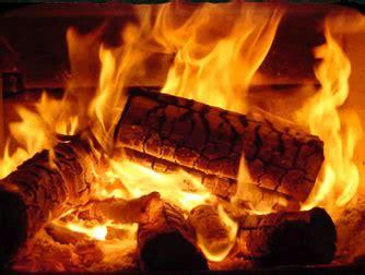 log fires and wetbacks | tauranga, katikati & te puke