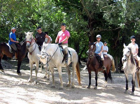 caballos cogiendo youtube caballo cogiendo con yegua fotos traves 237 a a caballo