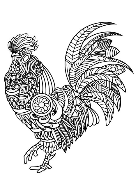 coloring pages for adults pdf animal coloring pages pdf coloring birds and feathers