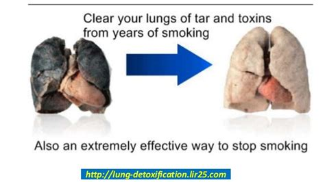 How To Detox From Quit Smokeing by How To Detox The Lungs