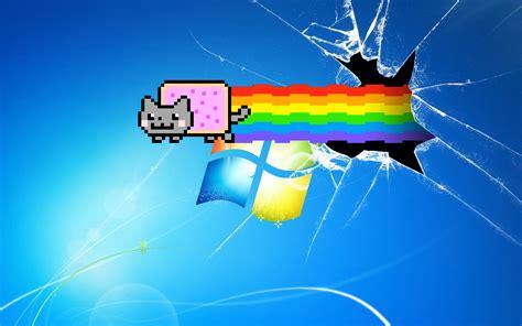 kitten wallpaper for windows 7 nyan cat wallpaper windows 7 wallpaper