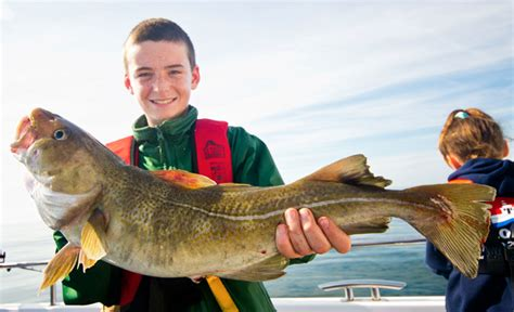 fishing boat charter falmouth fishing angling wildlife and charter boat trips from