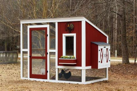 build   custom chicken coop hgtv