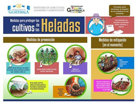 ministerio de agricultura ganadera y alimentos - Ministerio De Alimentaci N