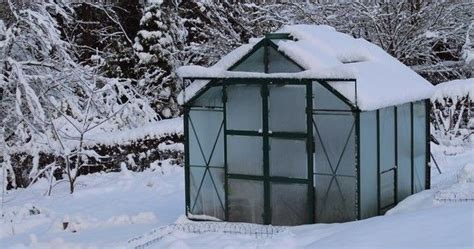 backyard greenhouse winter best 25 winter greenhouse ideas on pinterest cold climate gardening garden guide