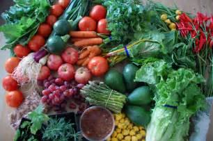 Best Summer Garden Vegetables - using your garden to eat smart choosing your veggies walkingspree