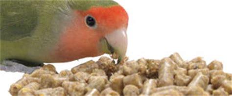 bird supplies lovebird diets