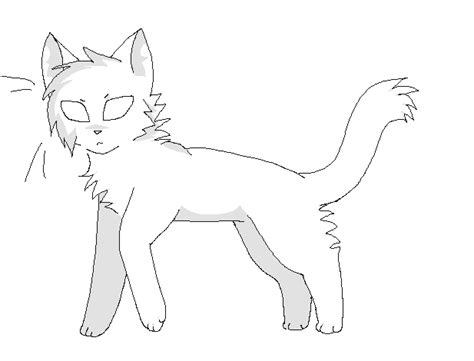 cat drawing template warrior cat template by sandpoolwarriors on deviantart