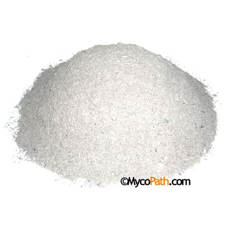 crushed oyster shell flour 3lbs 3 95 mycopath com