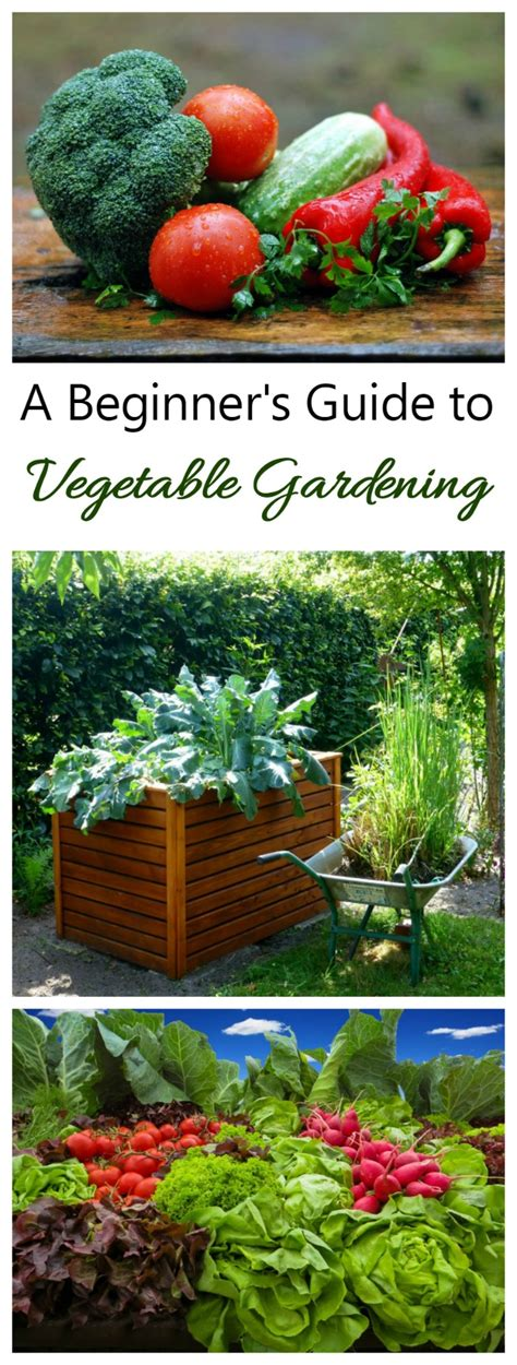 Vegetable Gardening Guide The Gardening Cook Vegetable Gardening Guide