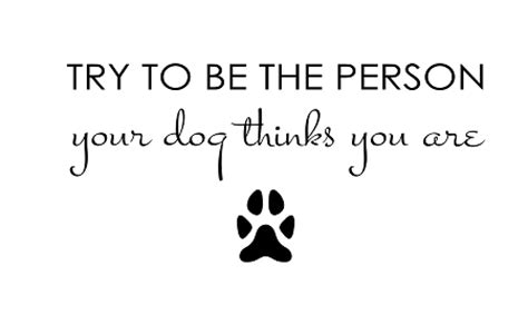 be the person your thinks you are try to be the person your thinks you are 3 5 quot x 35 quot
