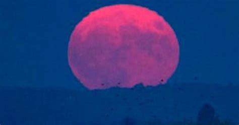pink moon look out for a pink moon tonight cbs news