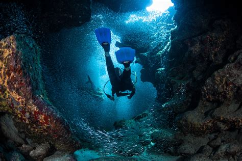 dive packages scuba diving in the cayman islands resorts packages