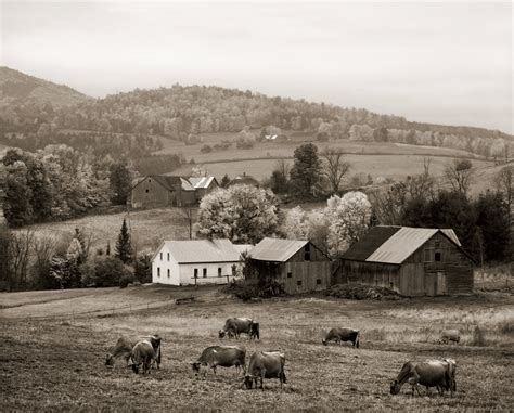 Family Farming Essay by The Last Of The Vermont Hill Farms Photos By Richard W Brown Yankee Magazine