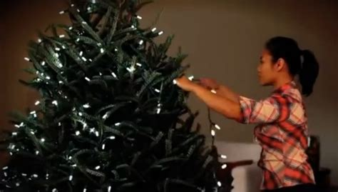 putting christmas lights on tree how to put lights on a tree hubpages