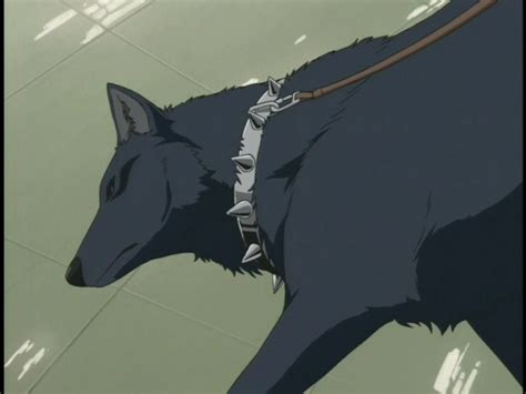 imagenes de anime wolves wolves images wolves n anime wallpaper and background