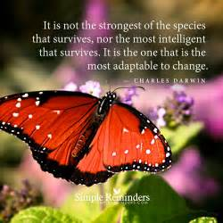 It Is The Most nor the most intelligent that survives it is by charles darwin
