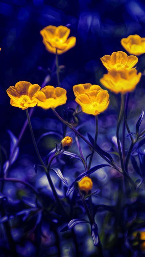 wallpaper buttercups   wallpaper flowers yellow