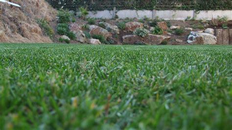 gazon jardin cr 233 ation gazon jardin paysagiste vannes morbihan