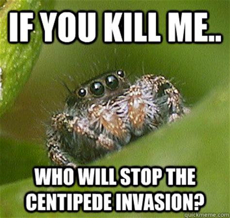 Killing Spiders Meme - spider corner meme memes