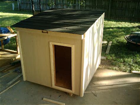 hinged roof dog house peredpetretreats dog house design hinged roof