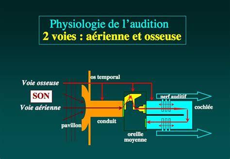 physiologie de l otologie dr albert mudry