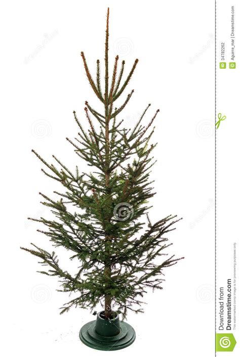 christmas tree stock photography image 34782262
