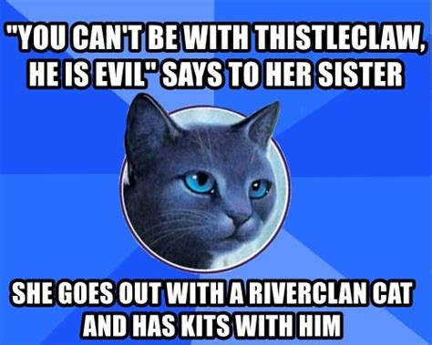 Warrior Cats Meme - 48 best warrior cat memes images on pinterest warrior