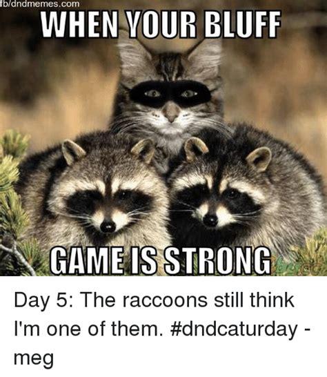 Racoon Meme - 25 best memes about dnd meme and memes dnd meme and