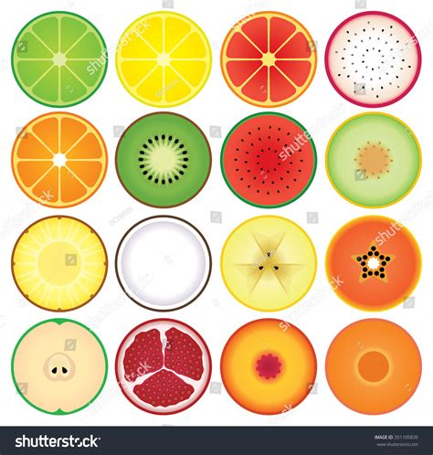 fruit rounds set summer fruit slice icons stock vector 351105839