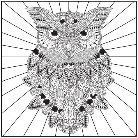 wonderful owls coloring book for adults and stress reduction combining nature poetry and for relaxation meditation and creativity volume 2 books shop coloring books tagged quot owls quot color with