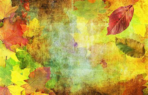paint with a twist the falls 無料の写真 秋 背景 emerge 10 月 葉 メープル ビーチ pixabayの無料画像