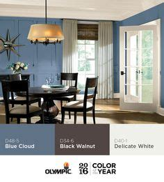 1000 images about olympic 2016 paint color of the year blue cloud on