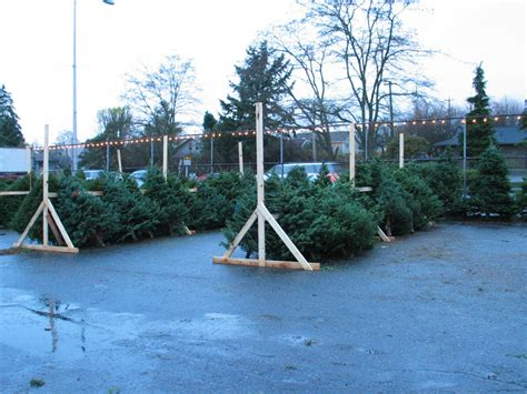 tree lot ideas white center now the about white center 187 holy family