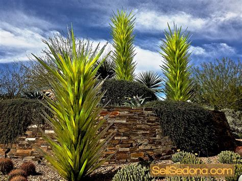 Night Day At Desert Botanical Gardens Phoenix Az Desert Botanical Garden Free Day
