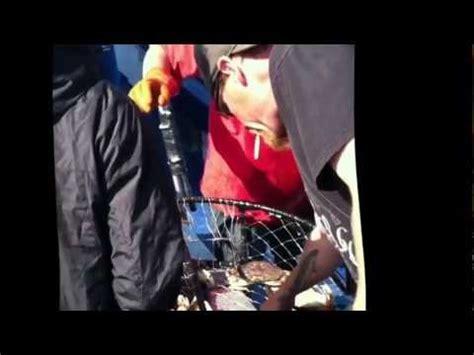 charter boat fishing depoe bay oregon depoe bay fishing charters doovi