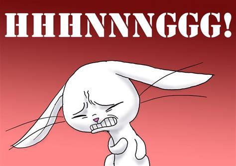 Hhhnnnggg Meme - mlp angel bunny memes