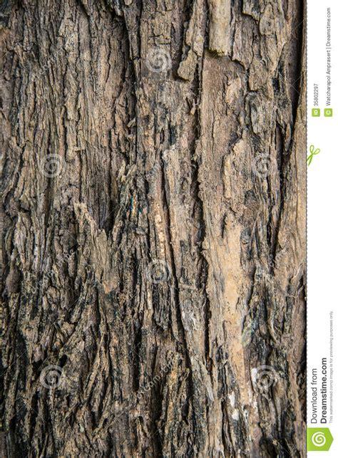 ruff bark brown bark royalty free stock photography image 35802297